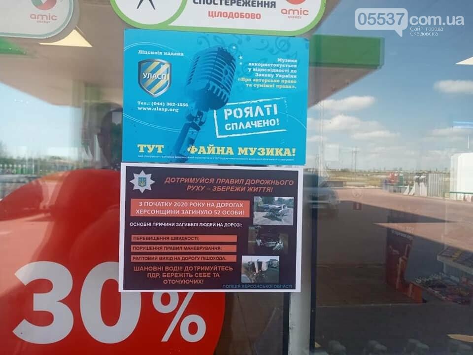 Профилактическая работа полицейских на дорогах Скадовска, фото-1