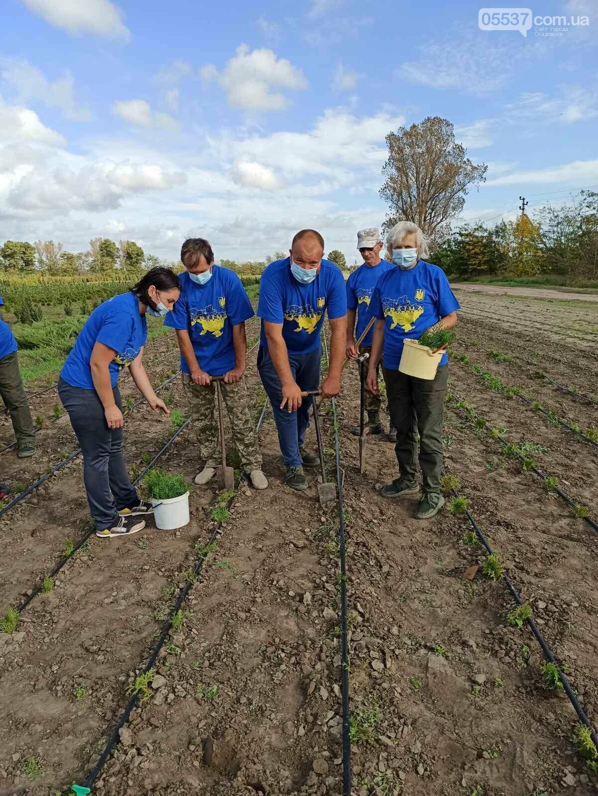 В Скадовске также присоединились к масштабной акции по озеленению, фото-1