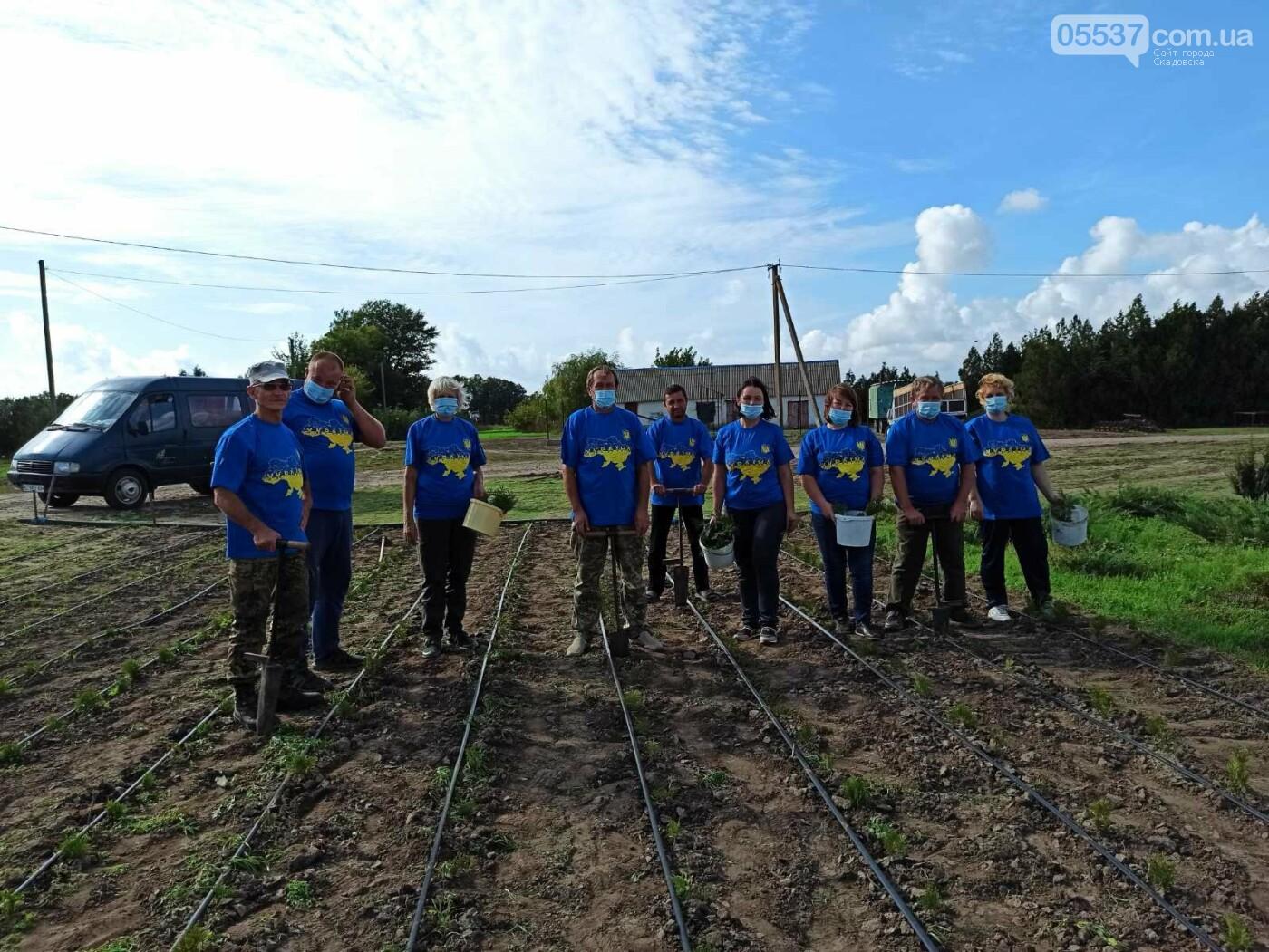В Скадовске также присоединились к масштабной акции по озеленению, фото-2