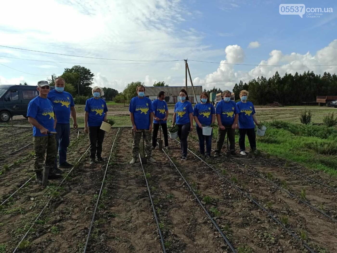 В Скадовске также присоединились к масштабной акции по озеленению, фото-4