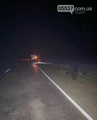 Вчера под колесами микроавтобуса погибла скадовчанка (ФОТО), фото-1