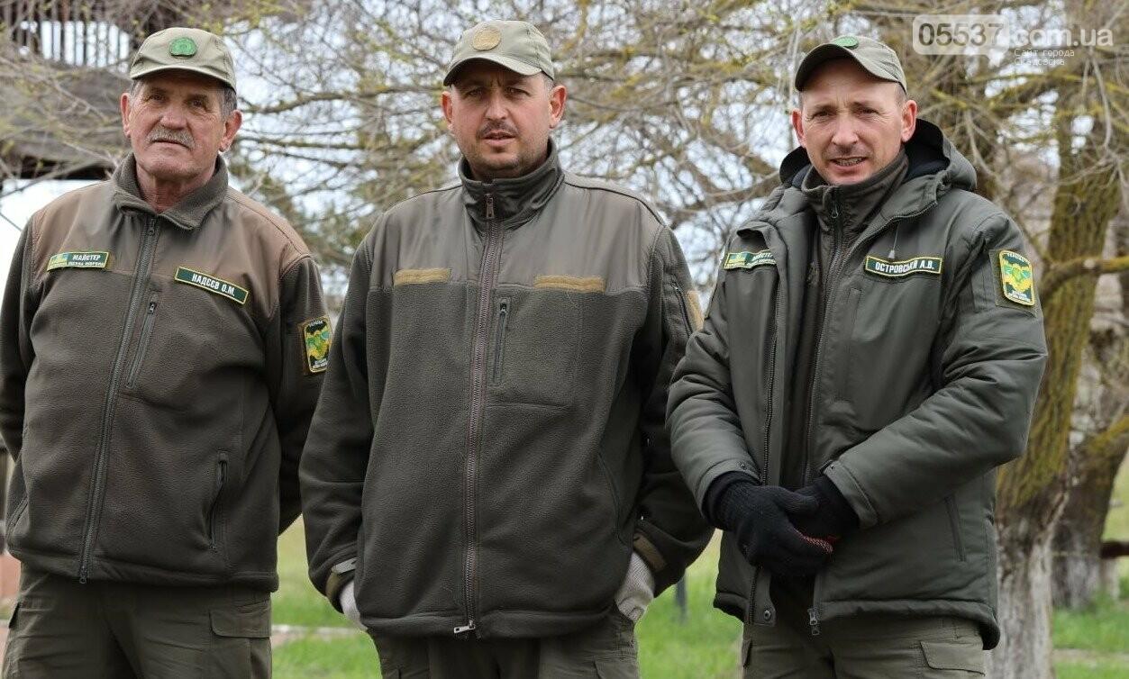 На скадовском Джарылгаче высадили деревья (ФОТО), фото-2